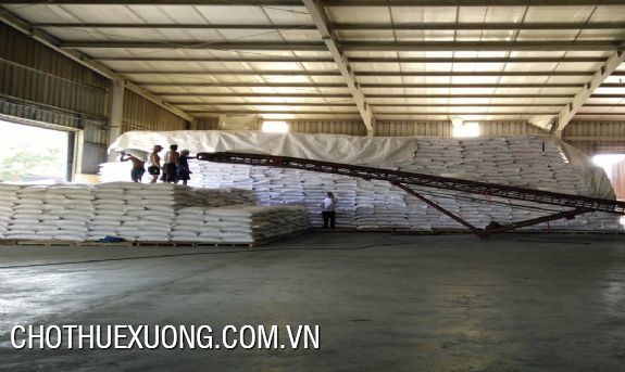 New workshop for lease the area of 5000sqm in Ha Noi 1