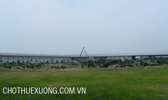 4200sqm land for sale in My Hao, Hung Yen with the cheap price