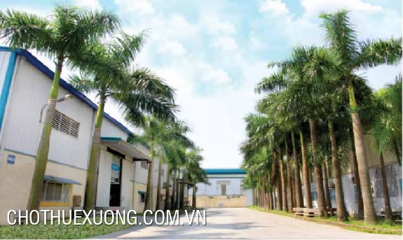 Factory for lease in Bach Hac industrial zone, Viet Tri, Phu Tho