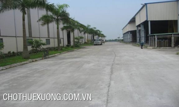 Warehouse for lease in Binh Giang, Hai Duong