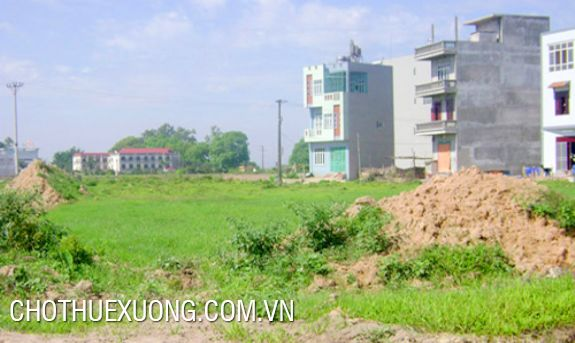 Land for lease in Dong Hung, Thai Binh with the cheapest price