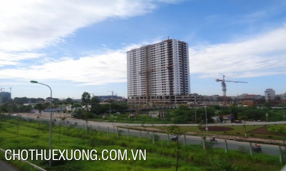 Industrial land for rent on the pavement of Thang Long Boulevard