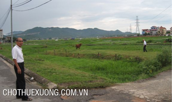 Land for sale near Dinh Tram industrial zone, Bac Giang