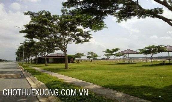 1,9 hectares land for sale in Thuan Thanh, Bac Ninh