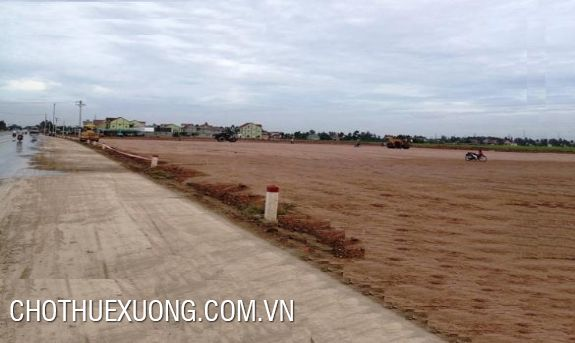 50-year industrial land for sale in Ninh Giang, Hai Duong