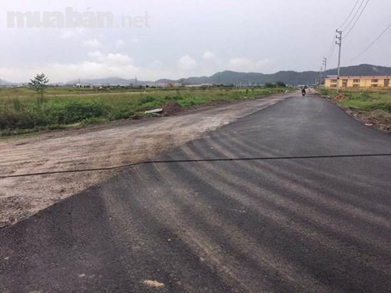 Cho Thuê Đất Xây Dựng Nhà Xưởng DT 50.000m2 Tại Tam Điệp, Ninh Bình.
