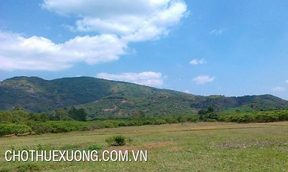 1,2 ha industrial land for sale in Ninh Khanh, Ninh Binh city