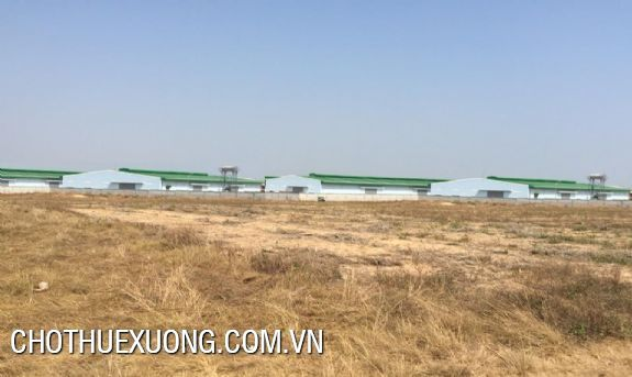 Land for sale in Khai Son industrial zone, Thuan Thanh 3, Bac Ninh