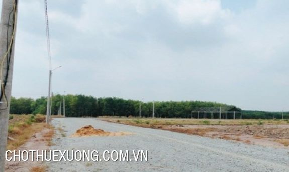 3ha industrial land for sale in Vinh Phuc